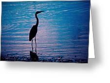 Herons Moment Greeting Card