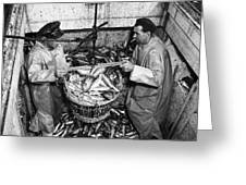 Herring Fishing Howth 1955  Greeting Card