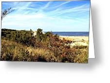 Herring Point Greeting Card