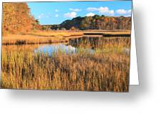 Herring River Cape Cod Marsh Grass Autumn Greeting Card