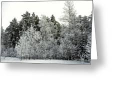 Hersey Lake Under Snow Greeting Card