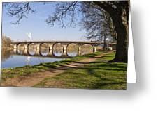 Hexham Bridge And Riverside Path Greeting Card