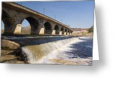 Hexham Bridge And Weir Greeting Card