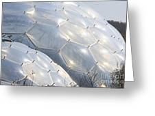 Hexigon Biomes Domes At Eden Greeting Card