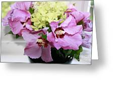 Pink Hibiscu And Hydrangea Flower #2 Greeting Card