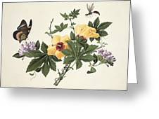 Hibiscus And Butterfly Greeting Card