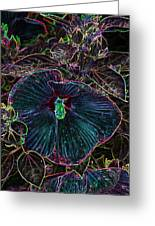 Hibiscus At Midnight Greeting Card