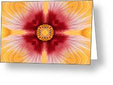 Hibiscus Close-up--kaleidoscope Greeting Card