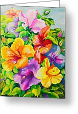 Hibiscus Rainbow Array Greeting Card