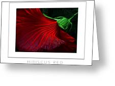 Hibiscus Red Poster Greeting Card