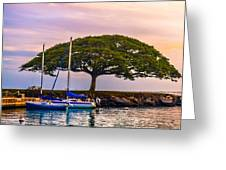 Hickam Harbor View Greeting Card by Lisa Cortez
