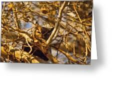 Hidden Owl Greeting Card