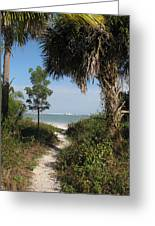 Hidden Path To The Beach Greeting Card