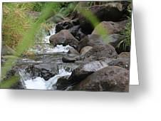 Hidden River Greeting Card