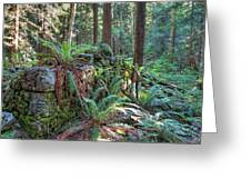 Hidden Rock Wall Greeting Card