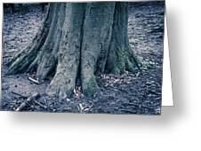Hidden Roots Greeting Card