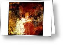 Hidden Square White Frame Greeting Card