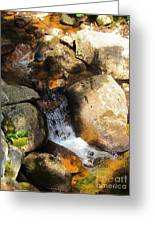 Hidden Waterfall Greeting Card