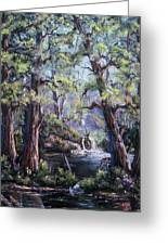 Hidden Waters Greeting Card