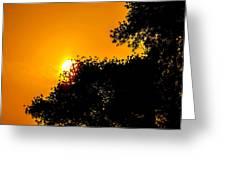 Hide N Seek Greeting Card
