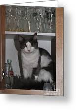 Hiding In The Cabinet Greeting Card
