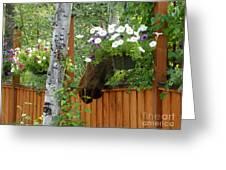 Hiding Moose Greeting Card by Jennifer Kimberly
