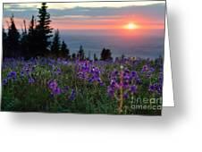High Country Dawn Greeting Card
