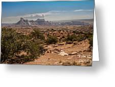 High Desert II Greeting Card