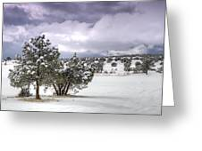 High Desert Snow Greeting Card