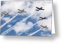 High Flying Five Greeting Card
