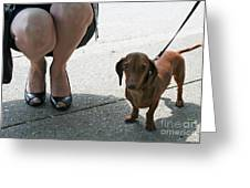 High Heels And A Dachsund Greeting Card