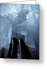 High Heels And Petticoats Greeting Card