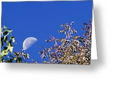 High Moon Greeting Card