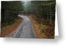 High Mountain Road Greeting Card