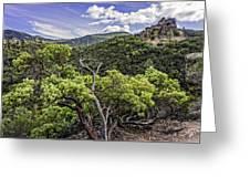 High Peaks Trail View Greeting Card