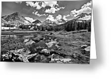 High Sierra Meadow Greeting Card