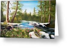High Sierra Stream Greeting Card by Joni McPherson