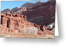 High Wall Of Red Cliffs Greeting Card