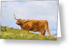 Highland Cow Watercolour Greeting Card