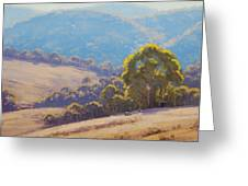 Highland Grazing Lithgow Greeting Card