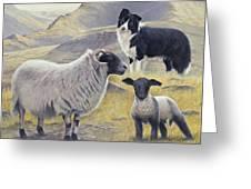 Highland Spirit Greeting Card by John Silver