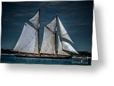 Highlander Sea Greeting Card