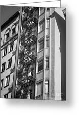Highrise Fire Escape Bw Greeting Card