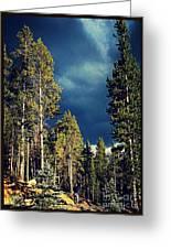 Hike In The Woods Greeting Card by Garren Zanker