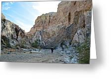 Hiker In Big Painted Canyons Trail In Mecca Hills-ca Greeting Card