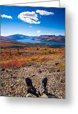 Hiker In Fall-colored Tundra Greeting Card
