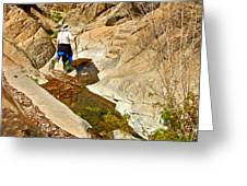 Hiker On Window Trail In Chisos Basin In Big Bend National Park-texas   Greeting Card
