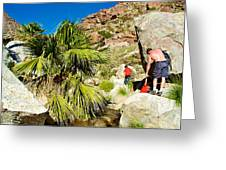 Hikers At Oasis On Borrego Palm Canyon Trail In Anza-borrego Desert Sp-ca  Greeting Card