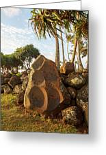 Hikina'akala Heiau, Wailua River State Greeting Card