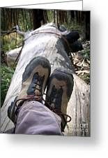 Hiking Boots Greeting Card